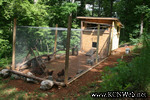 chicken house ramp
