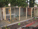Aviary chicken house