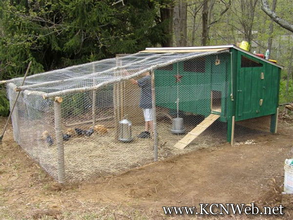 Chicken Houses Chicken House Pictures Chicken House Plans