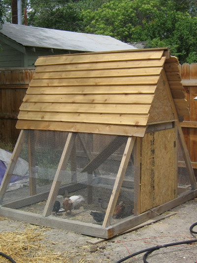 chicken coops - A Frame Chicken House Plans