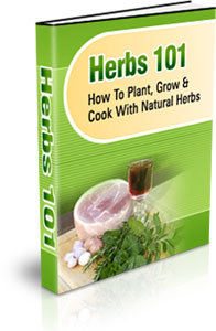 herbs 101 cover